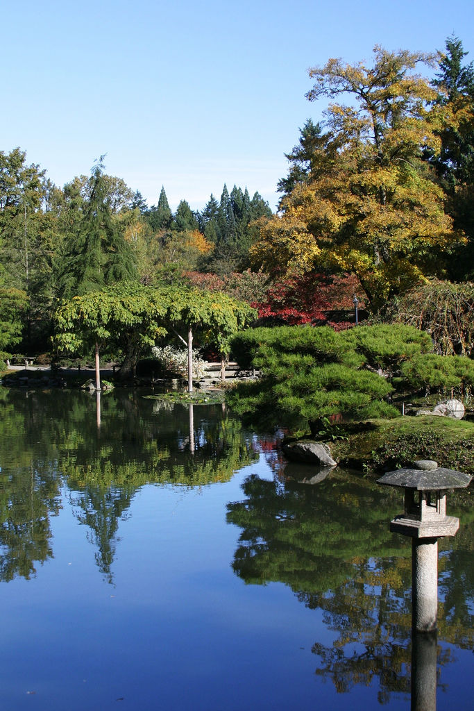 Traditional Japanese Garden (12)