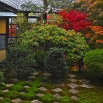 Traditional Japanese Garden (19)