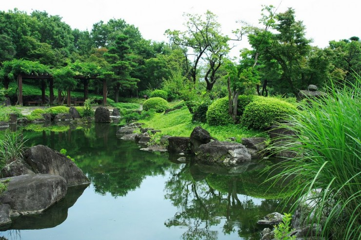 Traditional Japanese Garden (22)
