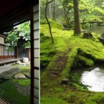 Traditional Japanese Garden (6)