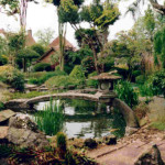 Traditional Japanese Garden (9)