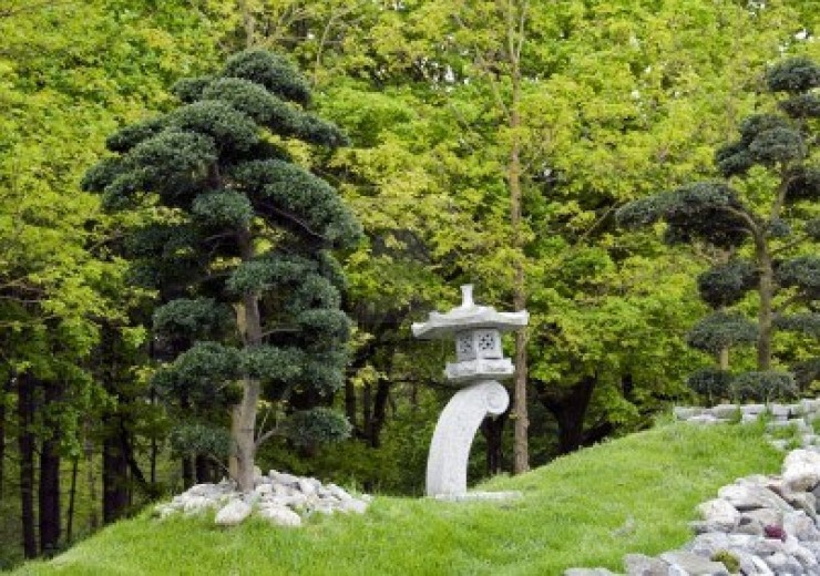Various Japanese Garden Structures (18)