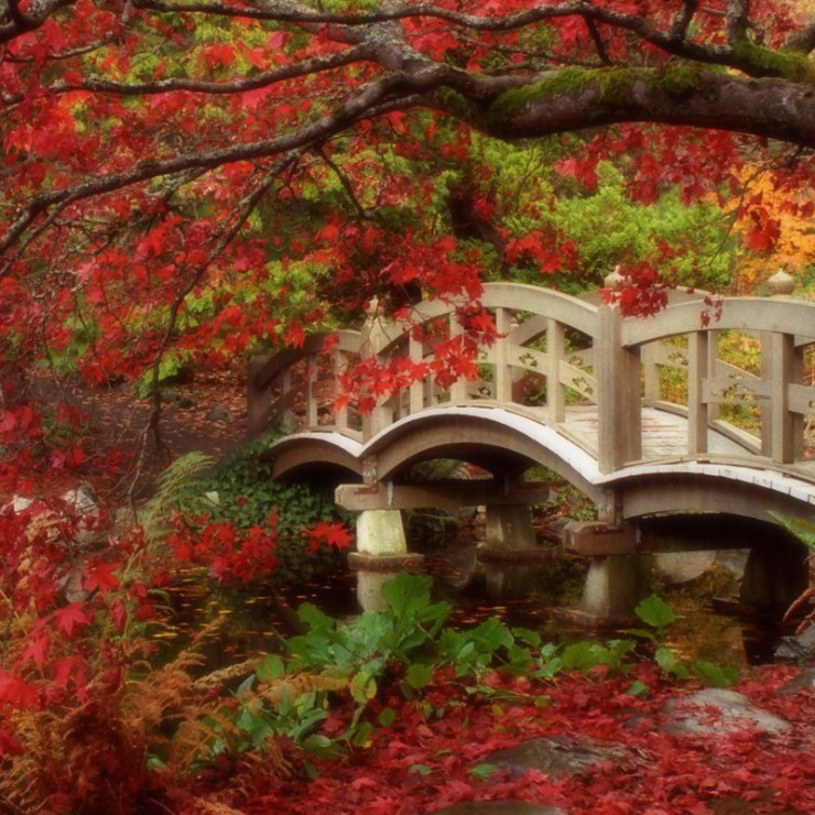 Various Japanese Garden Structures (7)