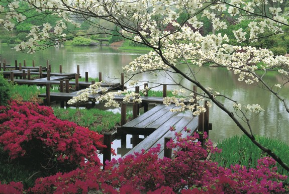 Wonderful Ideas For Japanese Garden (28)