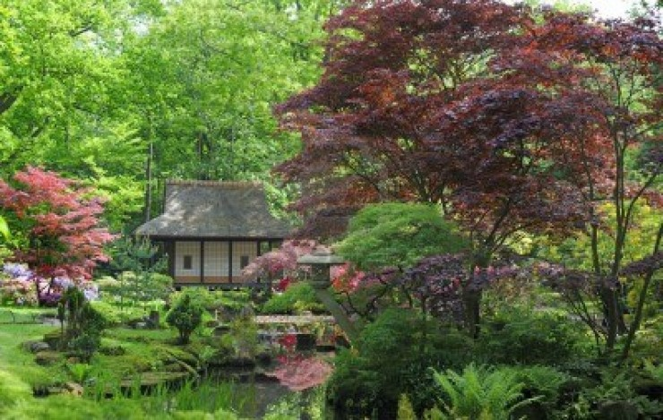 Wonderful Ideas For Japanese Garden (9)